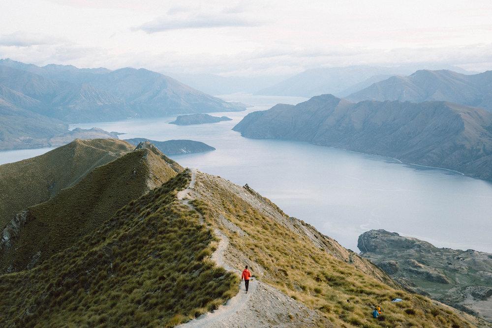 S16_NZ_Wells_0028.jpg