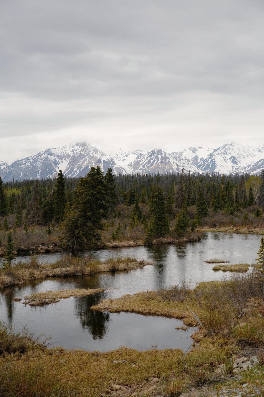 Yeehaw Donkey_CLIF_Alaska_0493.JPG