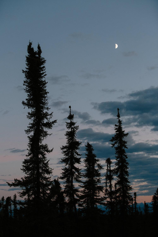 Yeehaw Donkey_CLIF_Alaska_0568.JPG