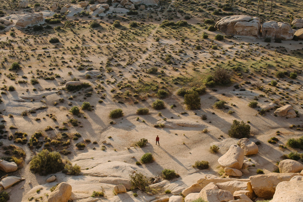 Girl walking through Joshua Tree