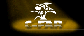 ECCI_website_LogoCfar.png