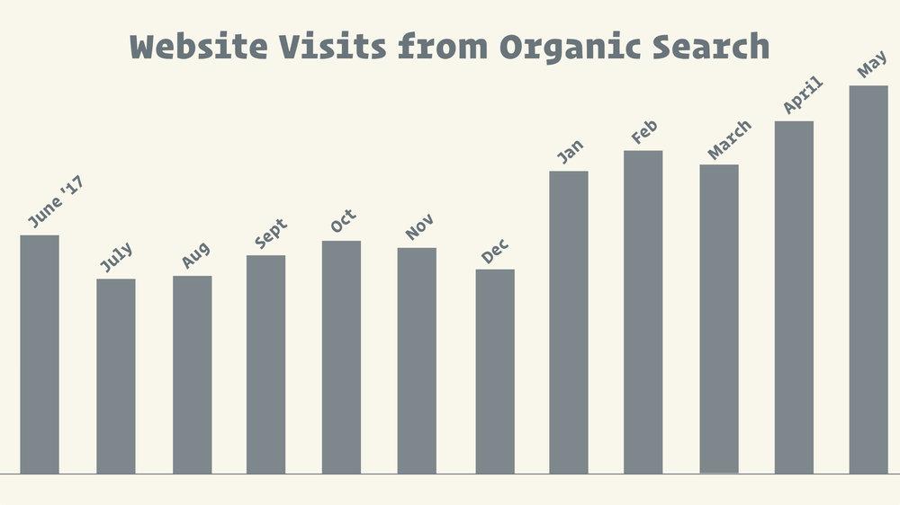 organic search traffic to salon website