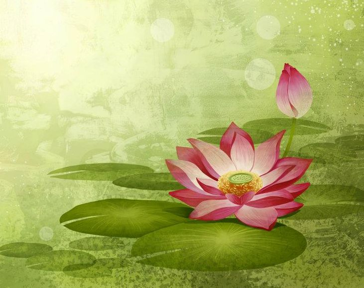 Without mud there is no lotus -