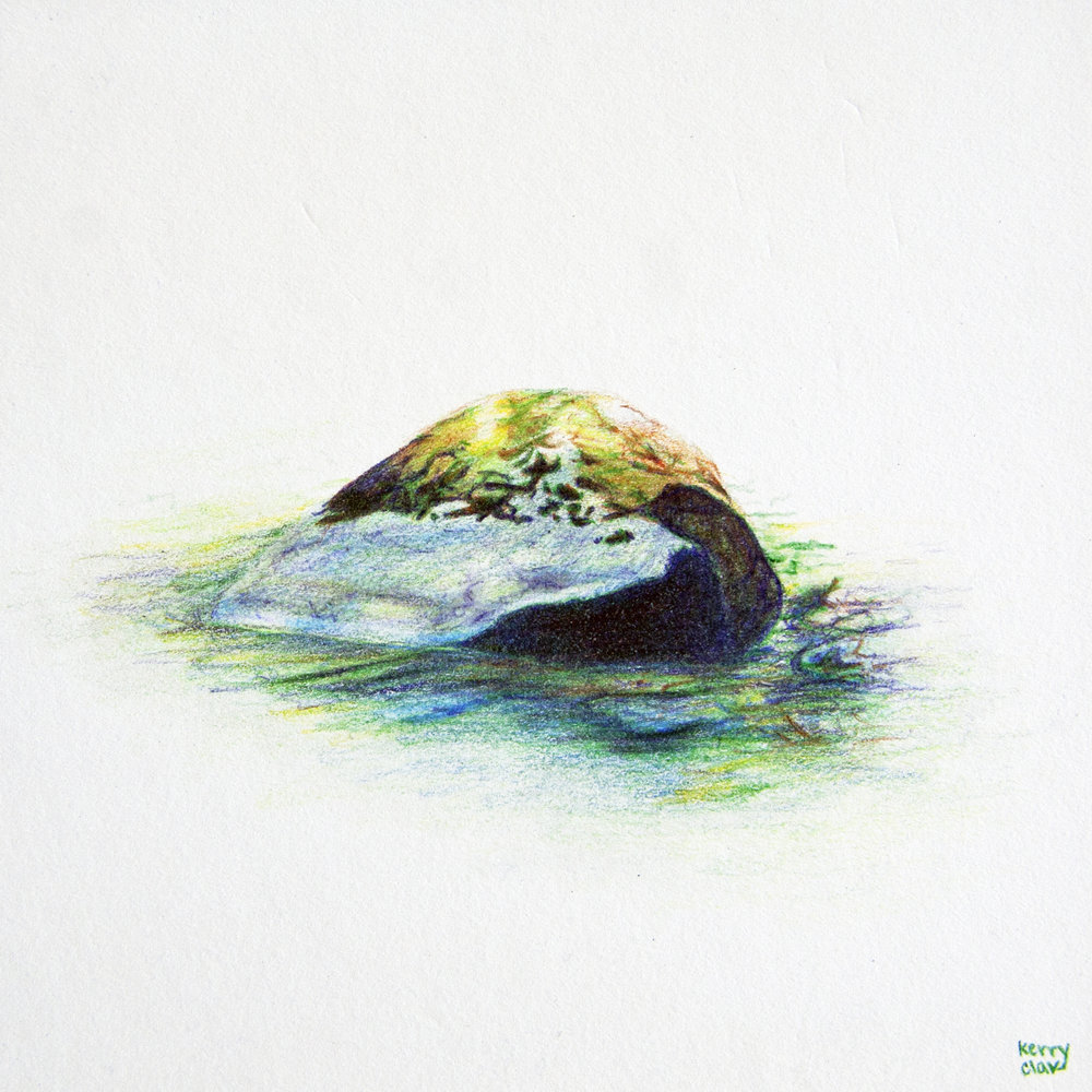 Stillaguamish Headwaters 4  Colored pencil on paper. 6 x 6 in.