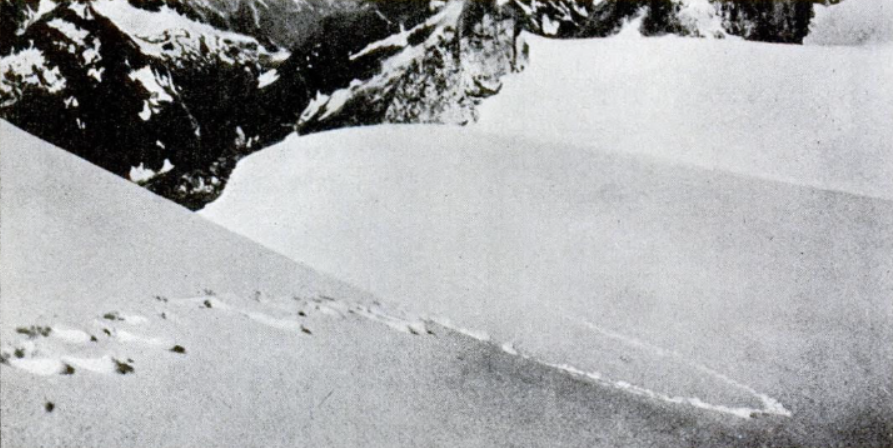 Alleged yeti footprints at the Himalayas found by Frank Smythe in 1937. Photograph was printed in Popular Science, 1952. The footprints were alleged to be from a yeti but were examined by experts and found indisputably to be bear's. Smythe accepted this conclusion. For his comments on the photograph see his articles: F. S. Smythe. (1937).Abominable Snowmen—Pursuit in the Himalayas—A Mystery Explained. Times (London), November 10. F. S. Smythe. (1937).The Abominable Snowmen. Times (London), November 16.