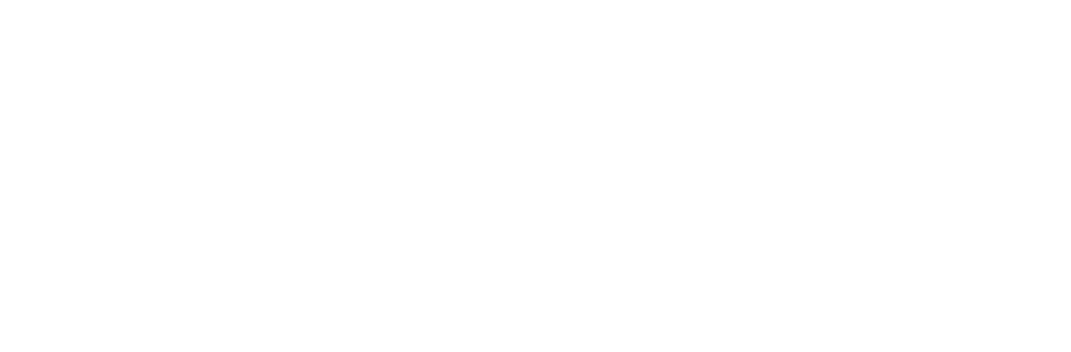 Priority Capital Solutions