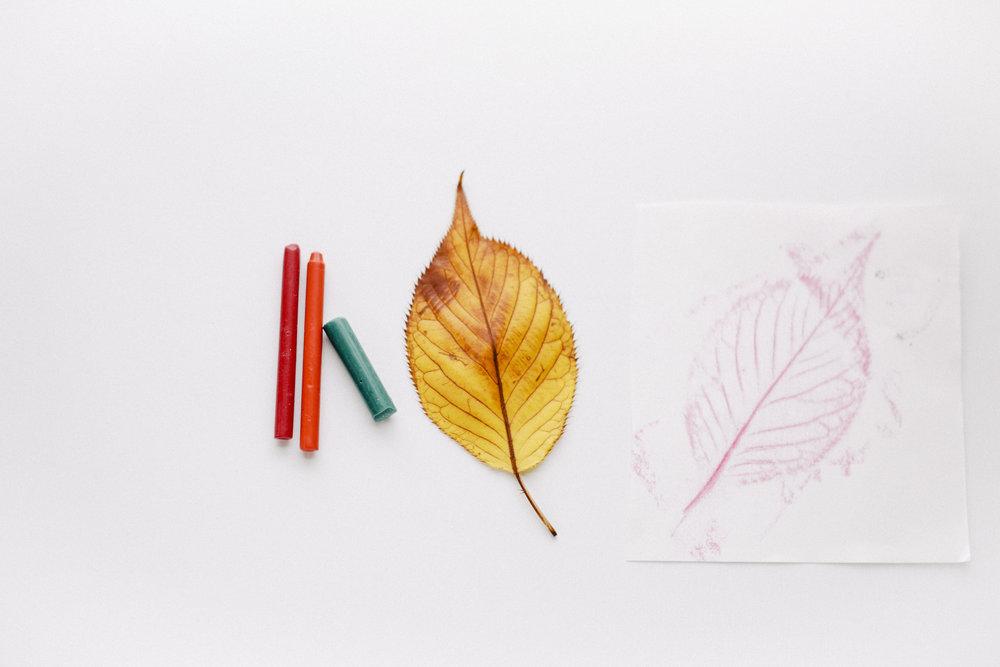 leaf-33.jpg