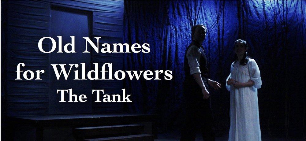 Old Names Banner.jpg