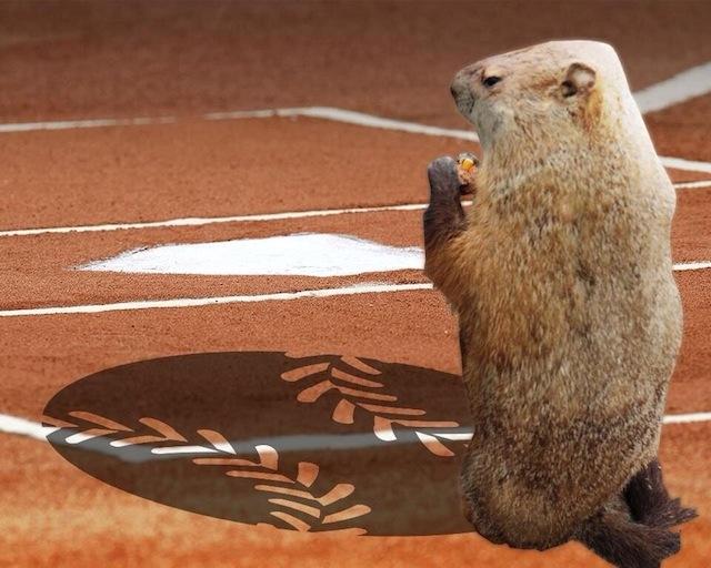Groundhog-baseball-shadow.jpg