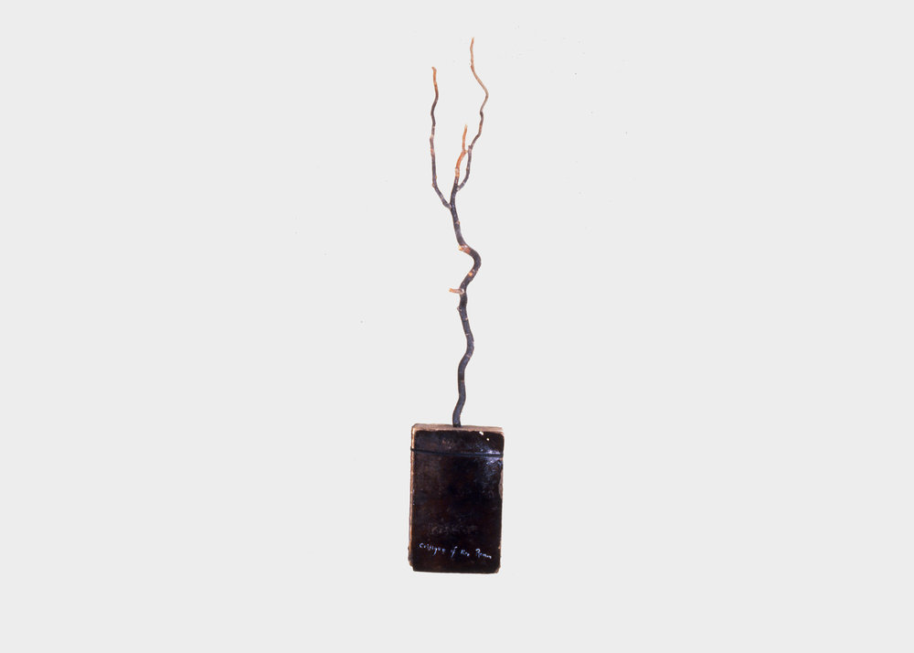 Keith Mitchell,  Critique of Pure Reason , 1986, mixed media, arbutus branch, L 8 x H 57.5 x W 2 inches