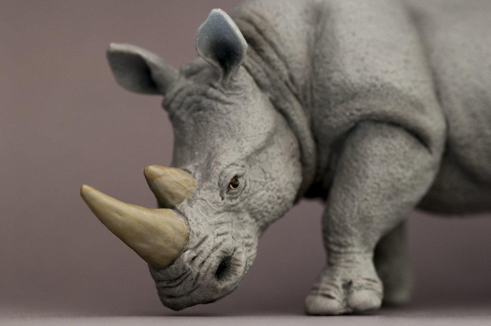 Suspicious Rhino