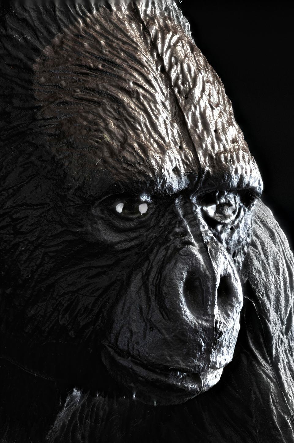 Gorilla Head #2