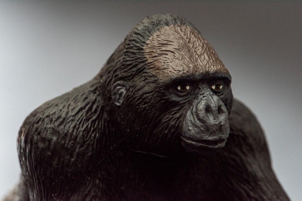 Gorilla #2 Glam