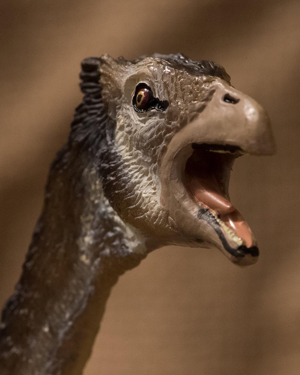 Beipiaosaurus #2
