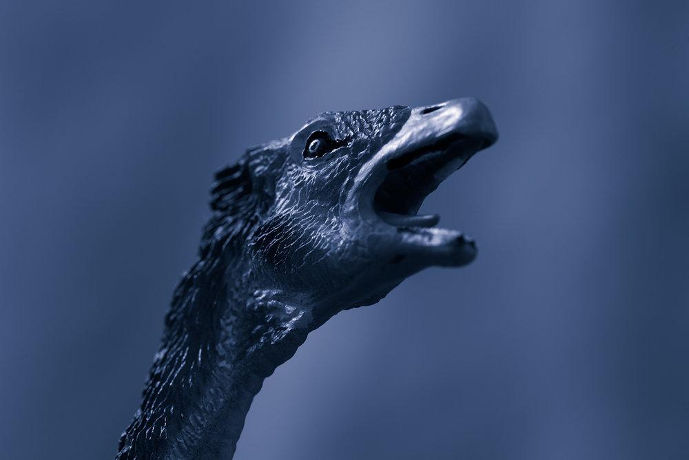 Beipiaosaurus #3