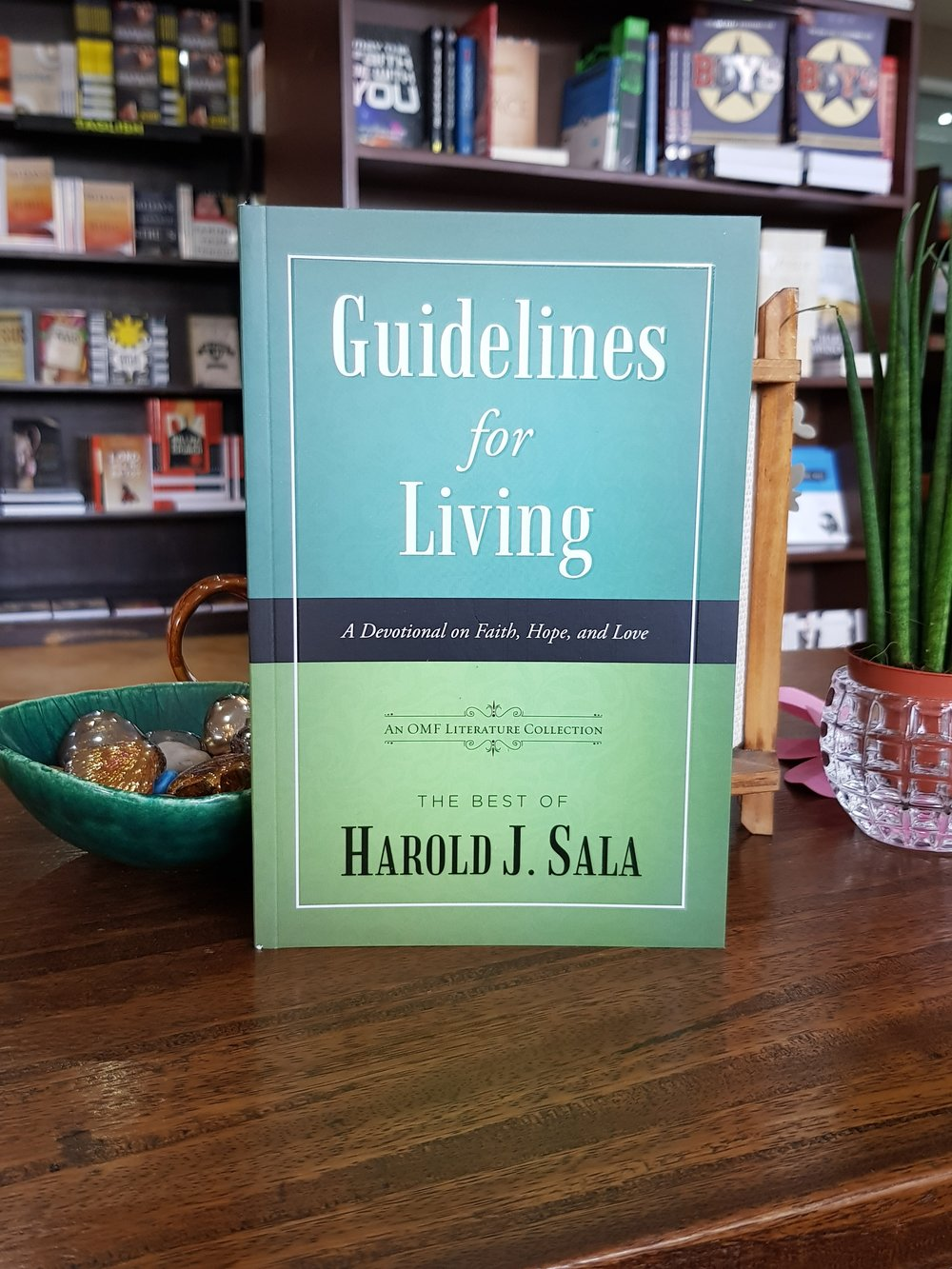 Guidelines For Living.jpg