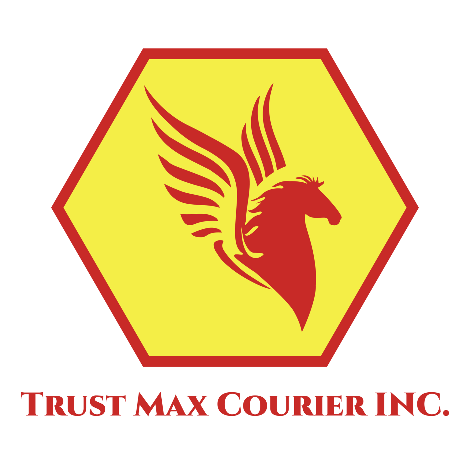 Trust Max Courier