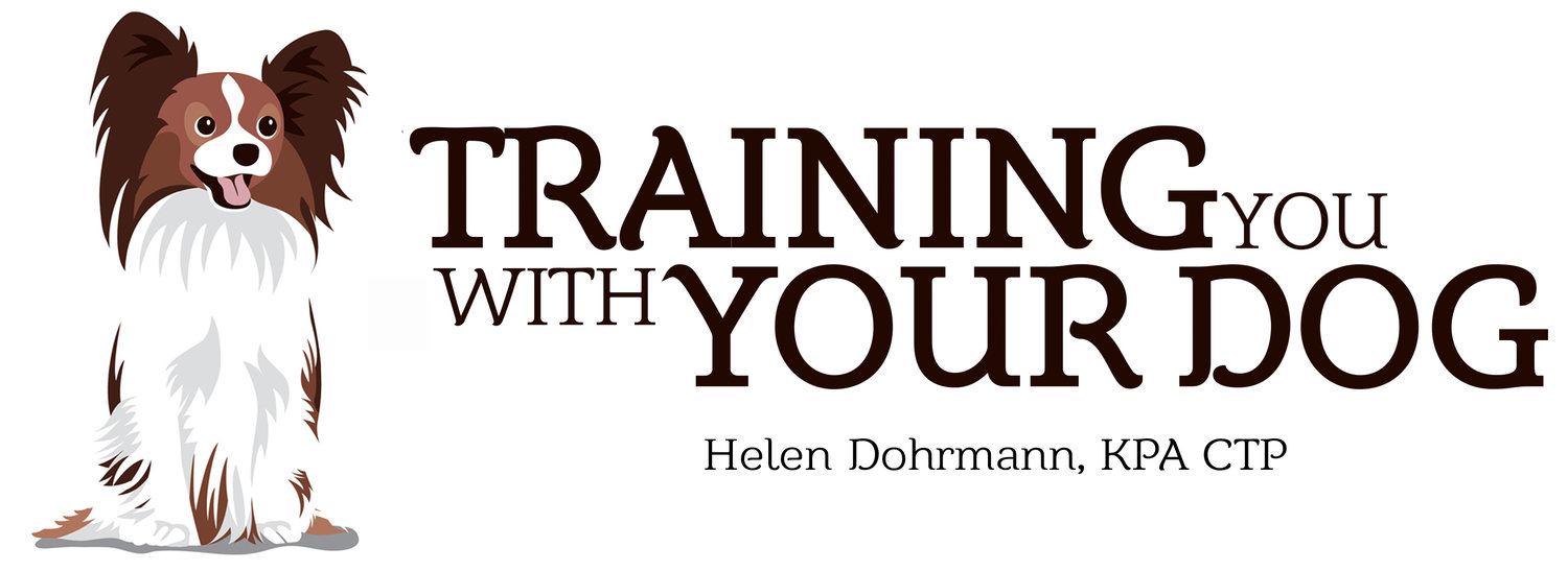Training You With Your Dog