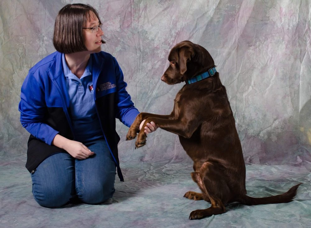 Sidney Ocheltree, CPDT-KA certified professional dog trainer in Redmond, Bellevue, Sammamish, Kirkland, Medina and Issaquah, WA. Uses positive reinforcement dog training.