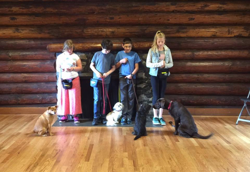 Summer dog training camp for kids, children, teens, at Redmond Parks and Recreation Department. Kids train therapy dogs for the CGC test.