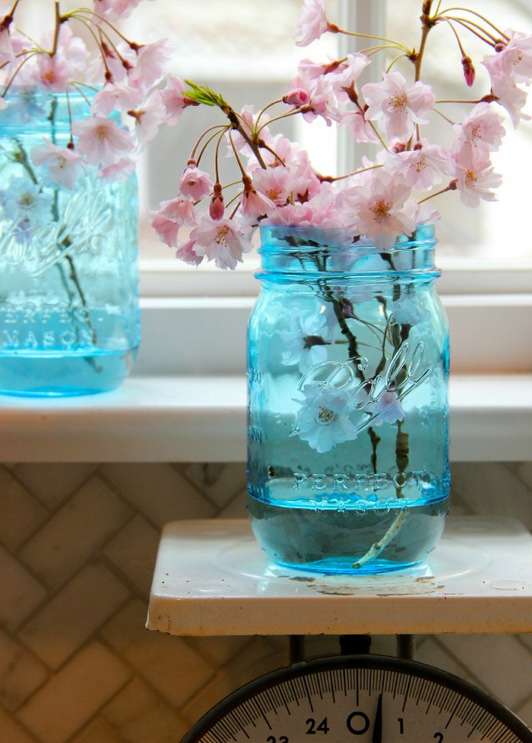 Blue Ball Mason Jars