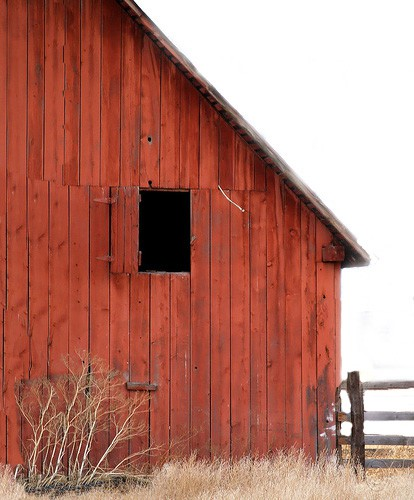 BIG Dreams in a RED barn