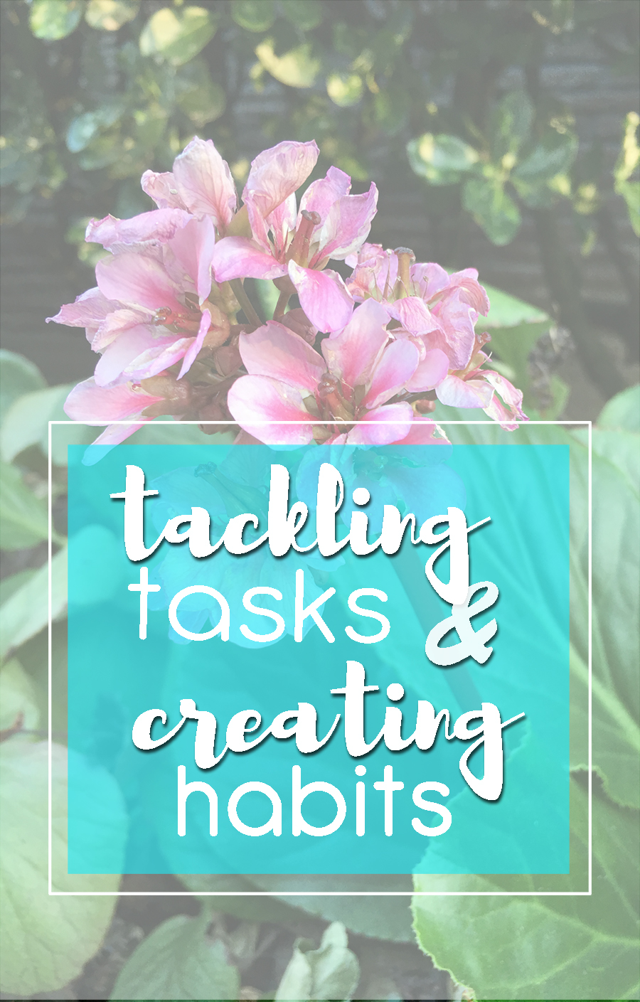 Tasks and Habits (long)