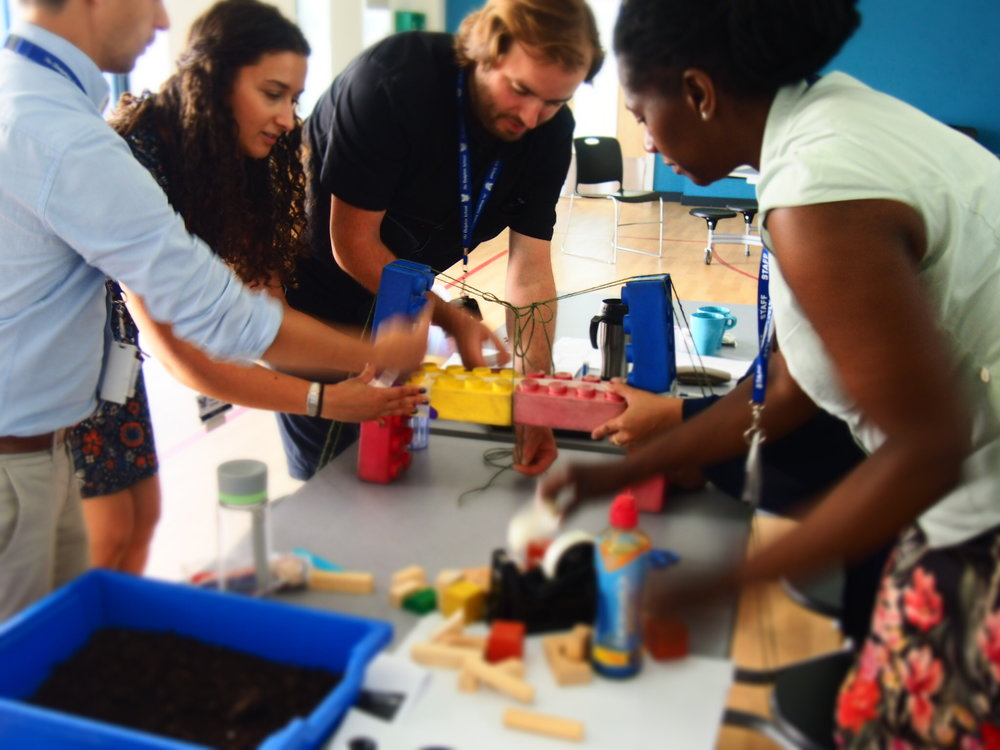 Expert training from experienced teachers -