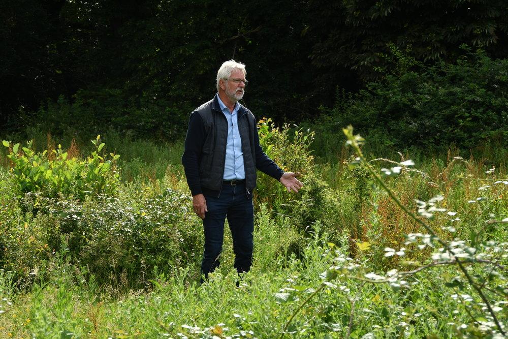 Dr Frans Vera, Knepp 2017