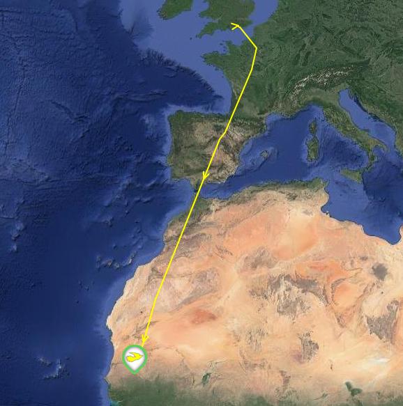 raymond cuckoo map.png