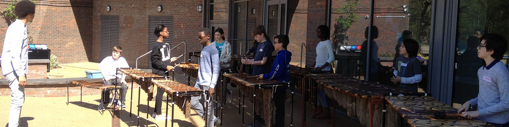 African Marimba Workshops In Schools London