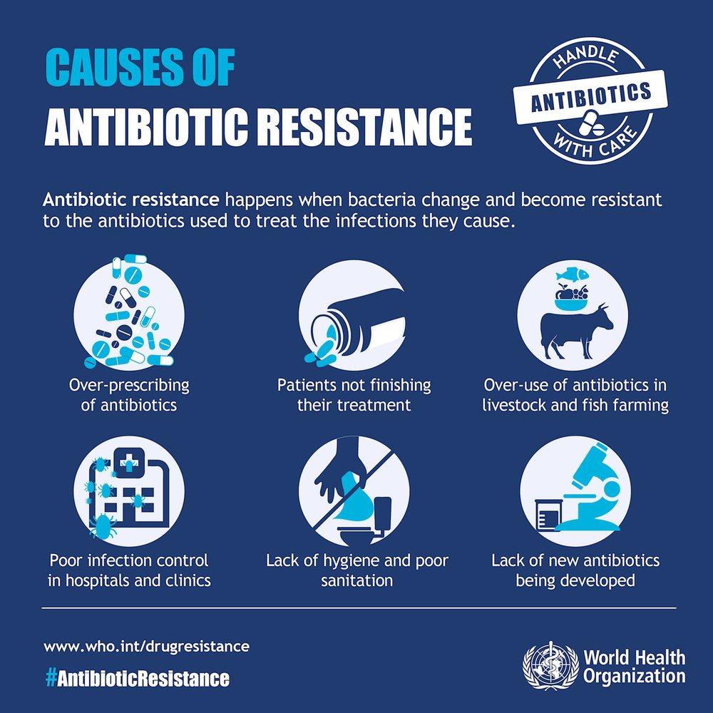 image courtesy of the World Health Organisation