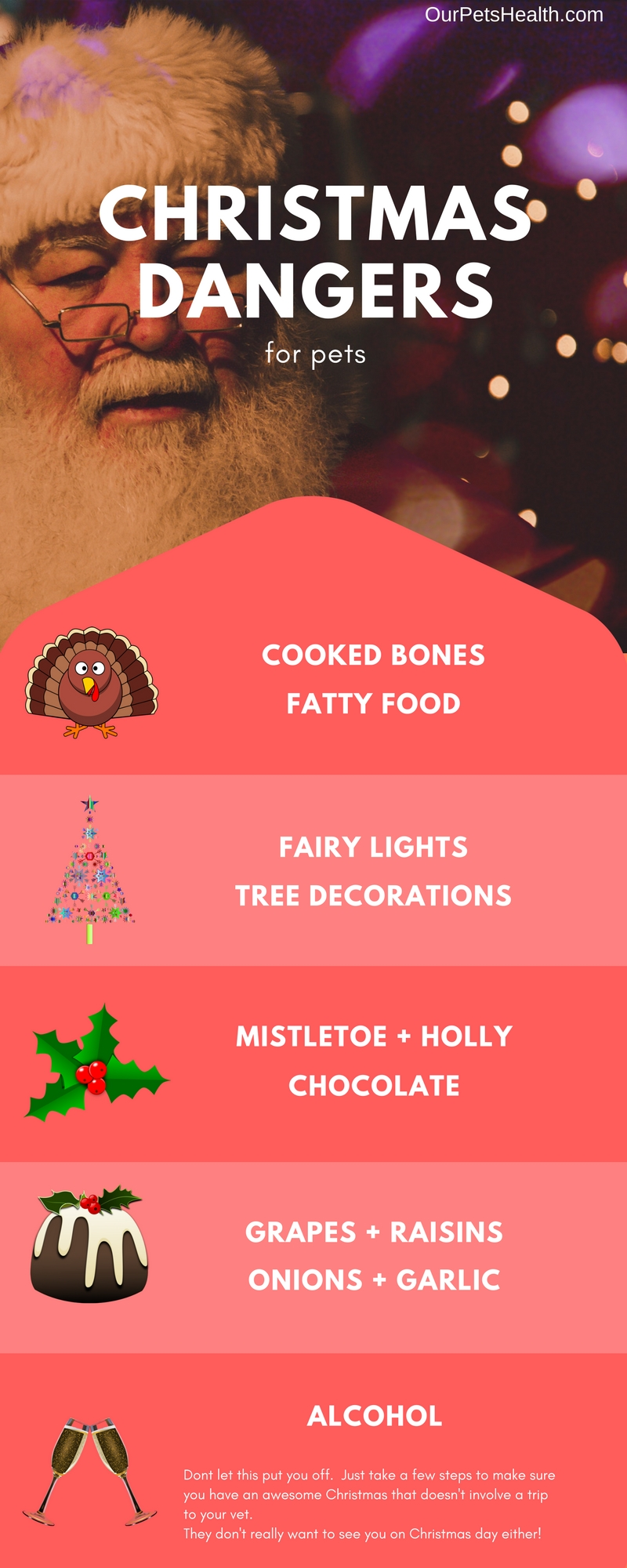 CHRISTMAS DANGERS infographic.jpg