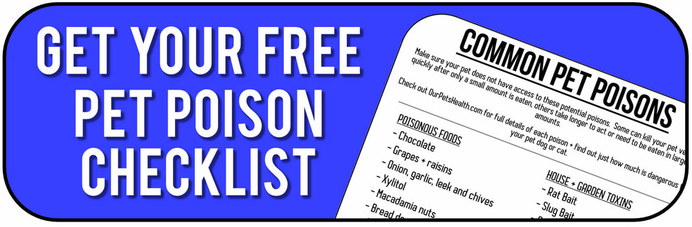 download my common pet poison checklist for cats and dogs