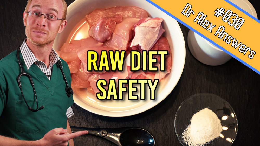 are raw diets safe for dogs and cats?