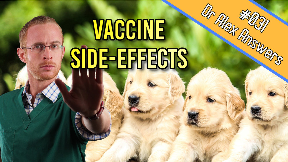 vaccine side effects in puppies