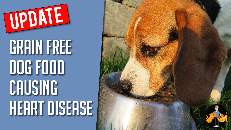 grain free diet cdm