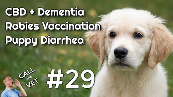 CBD oil for Dementia, Rabies Vaccination and Stopping