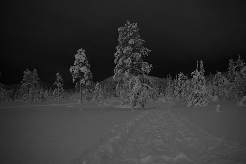 Lumikengillä oli helppo lähteä katsomaan, näkyisikö revontulia (Ylläs 2016)