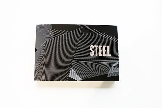 STEEL Booklet2.jpg