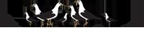 fanoespk--logo-white.png