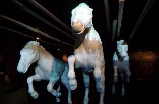 War Horse: Fact & Fiction   London, United Kingdom