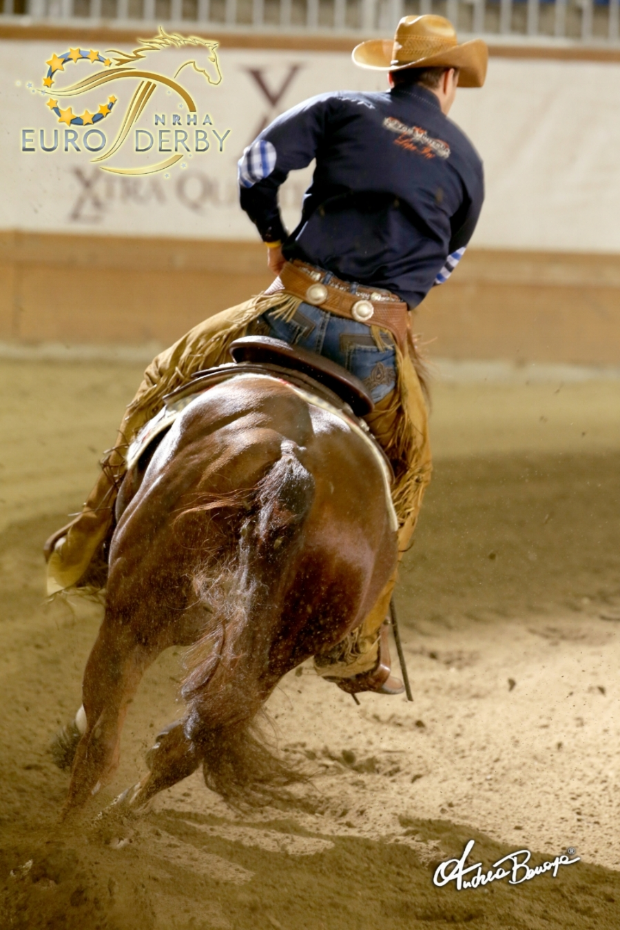 Custom del Cielo at the European Derby 2014 - lvl4 Open Reserve Champion