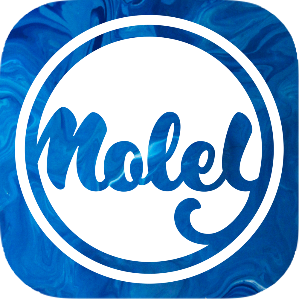 Moley App first draft.png