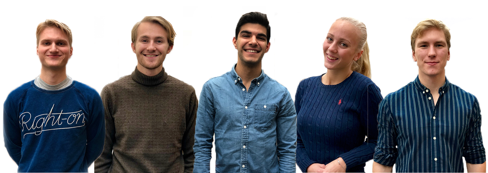 Team: (left to right) Fredrik Lindstedt (LTH),Kevin Östlin (LTH),Keiwan Mosaddegh (LTH),Vera Rönngard (Economics),Fredrik Sidh (LTH)