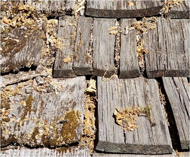 natural cedar wood shake issues.jpg