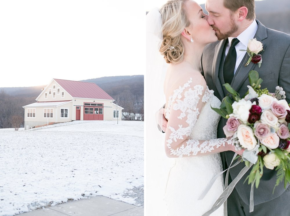 Marryland Weddings Romantic Winter Garden Springfield Manor Thurmont MD Brittany Thomas Photography_0790.jpg