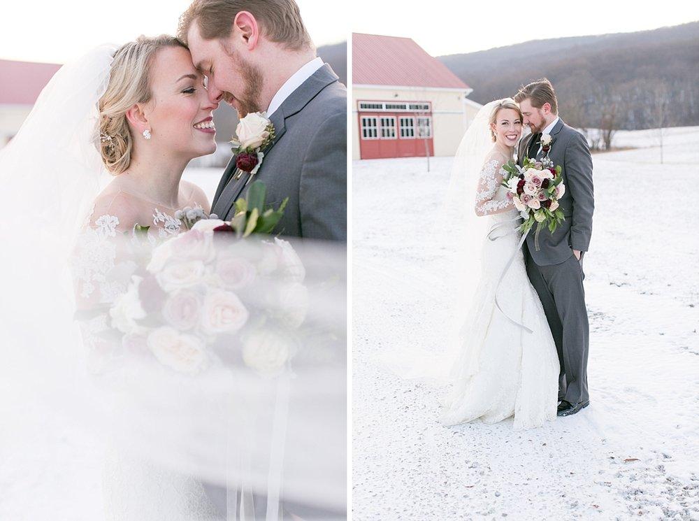 Marryland Weddings Romantic Winter Garden Springfield Manor Thurmont MD Brittany Thomas Photography_0793.jpg