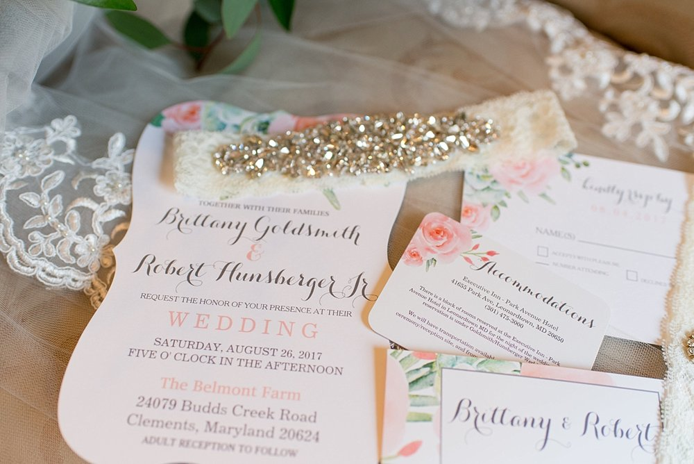 Belmont Farm Mint Blush Rustic Wedding_1302.jpg