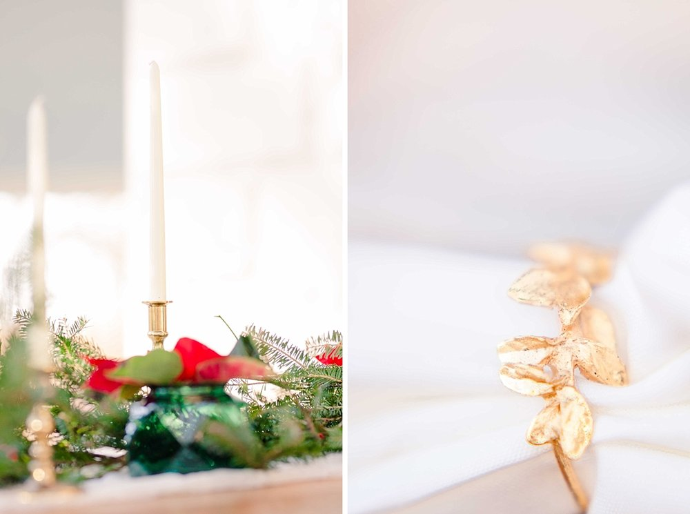 Christmas Holiday Classy Glamorous Styled Shoot Amanda MacPhee Photography for Marryland Weddings_1509.jpg